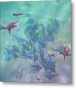 Galapagos Islands From Under Water Metal Print