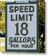 Gallops Per Hour Metal Print
