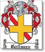 Gallway Coat Of Arms Irish Metal Print