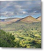 Galty Mountains 1 Metal Print