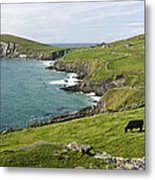 Atlantic Coast Of Ireland Metal Print