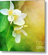 Garden Bliss Metal Print