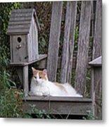 Garden Cat Metal Print
