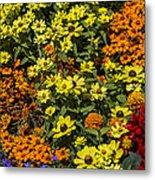 Garden Colors Metal Print