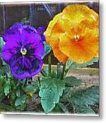 Garden Flowers Poppies Metal Print