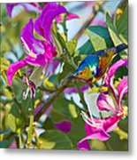 Garden Jewels Metal Print by Ashley Vincent