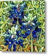 Garden Jewels I Metal Print