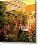 Garden Light At Isle Of Palms Metal Print