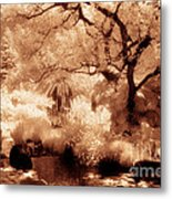 Garden Lily Pond Metal Print