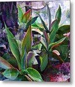 Garden Of Agave Metal Print