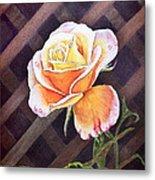 Garden Tea Rose Metal Print