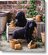 Gardeners Corner Metal Print by John Silver