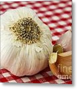 Garlic Metal Print by Blink Images