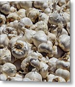 Garlic Harvest Metal Print