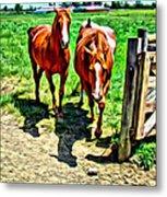 Gate Horse Metal Print