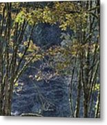 Gate Way To The Winters Forest Metal Print by Donald Torgerson