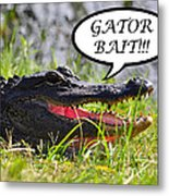 Gator Bait Greeting Card Metal Print