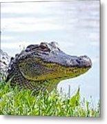 Gator Smile Metal Print