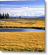 Geese At Yellowstone Lake Metal Print