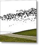 Geese Metal Print by Frits Selier