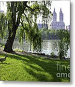 Geese In Central Park Nyc Metal Print