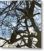 Geese In Twlight Sky Metal Print