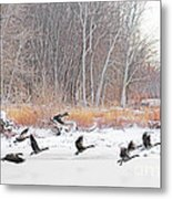 Geese Over Maumee River Metal Print