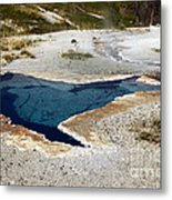 Geiser In Yellowstone Metal Print
