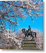 General In The Cherry Blossoms Metal Print