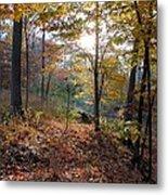 Gentle Forest Metal Print