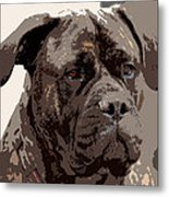 Gentle Gina  Metal Print