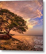 Gentle Whisper Metal Print