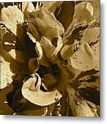 George Burns Rose 2 Metal Print