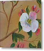 Georgia Flowers - Apple Blossoms- Stretched Metal Print