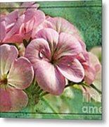 Geranium Blossoms Photoart Metal Print