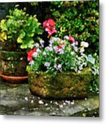 Geraniums And Lavender Flowers On Stone Steps Metal Print