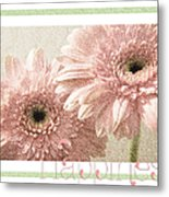 Gerber Daisy Happiness 3 Metal Print