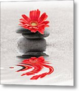 Gerbera Reflection Metal Print by Delphimages Photo Creations