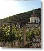 German Countryside Metal Print