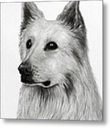 German Shepherd Metal Print by Lorraine Foster