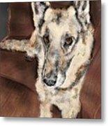 German Shepherd On Couch Metal Print