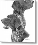 German Short-hair Pointer Metal Print