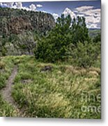 Get Off The Road And Enjoy Nature Metal Print