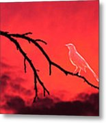 Ghost Bird Metal Print