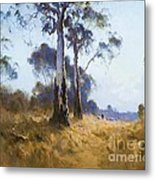 Ghost Gum At Kangaroo Flat Metal Print