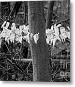 Ghost Leaves Metal Print by Steven Ralser
