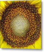 Ghost Sunflower Metal Print