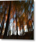 Ghosts Of The Forest Metal Print