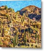 Giant Cordon Cactus Metal Print
