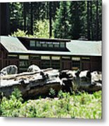 Giant Forest Museum Metal Print